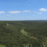 Addo Park landscape 2